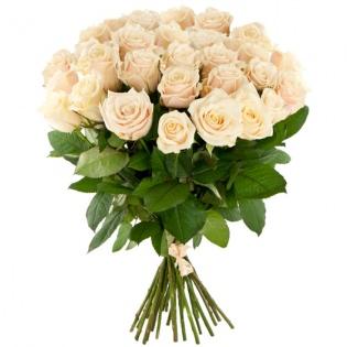 Розы Эквадор кремовые